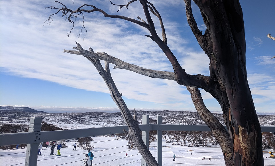 View from a restaurant in Perisher